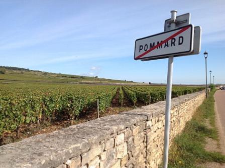 Landscape: Pommard